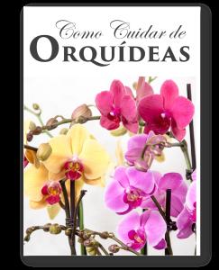 orquideas livro